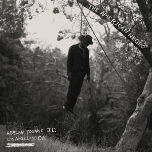 Cover von The American Negro