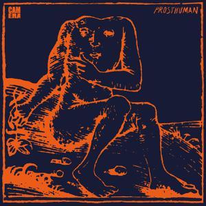 Foto von Prosthuman (lim ed. colored vinyl)