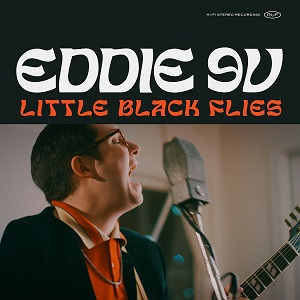 Foto von Little Black Flies