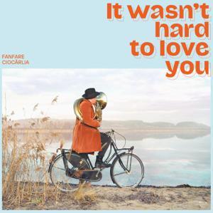 Foto von It Wasn't Hard To Love You
