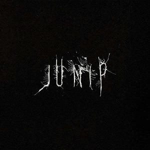 Foto von Junip