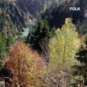Foto von Wald