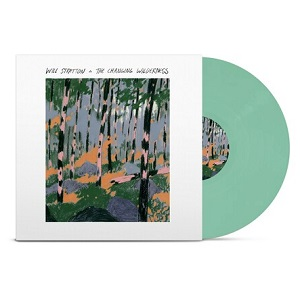 Foto von The Changing Wilderness (Colored Vinyl)