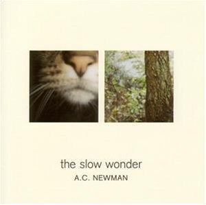 Cover von The Slow Wonder