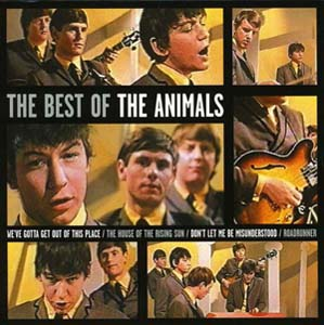 Foto von The Best Of The Animals