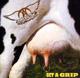 Foto von Get A Grip (rem.)