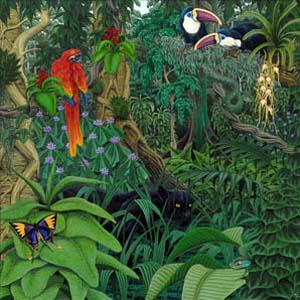 Foto von Fretboard Jungle