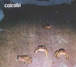 Foto von Cairobi
