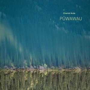 Cover von Püwawau