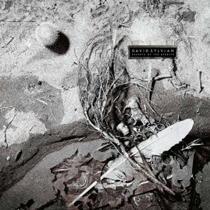 Foto von Secrets Of The Beehive (rem.)