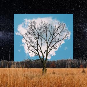Cover von Bloom Innocent (ltd. white vinyl)
