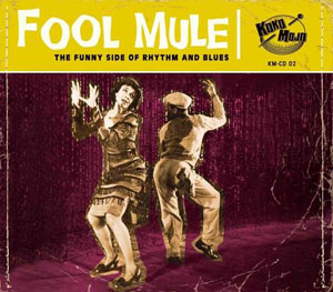 Foto von Fool Mule (The Funky Side Of Rhythm And Blues)