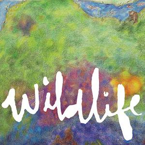 Foto von Wildlife
