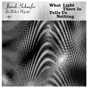 Foto von What Light There Is Tells Us Nothing