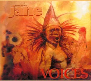 Cover von Voices