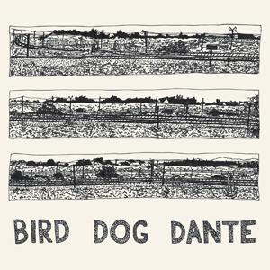 Foto von Bird Dog Dante
