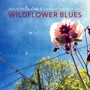 Foto von Wildflower Blues