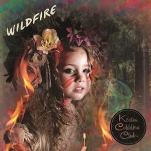 Foto von Wildfire