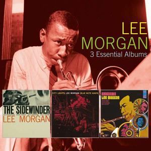 Foto von 3 Essential Albums