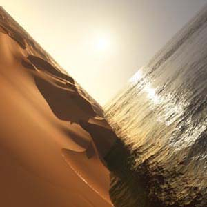 Foto von Under The Sun