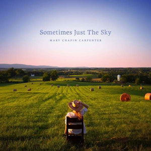 Cover von Sometimes Just The Sky