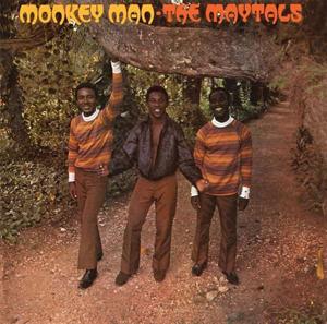 Foto von Monkey Man