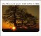 Foto von The Sunset Tree