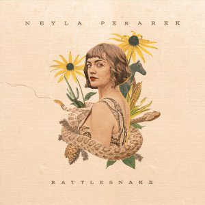 Cover von Rattlesnake