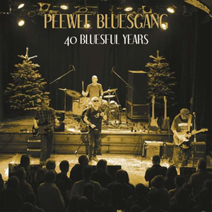 Cover von 40 Bluesful Years