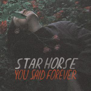 Cover von You Said Forever