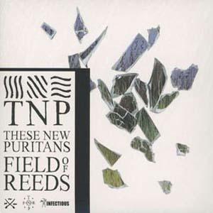 Foto von Field Of Reeds