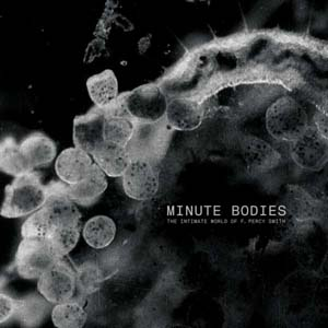 Foto von Minute Bodies (ltd. DeLuxe)
