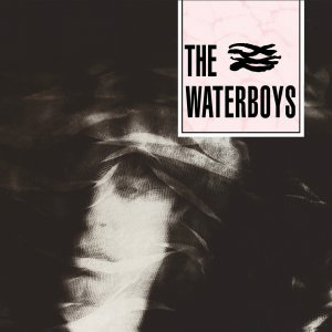 Cover von Waterboys (exp.)